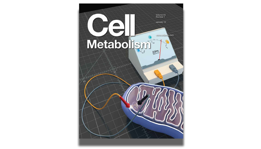 Cell Metabolism 2015