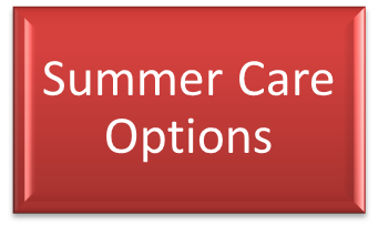 Summer Care Options