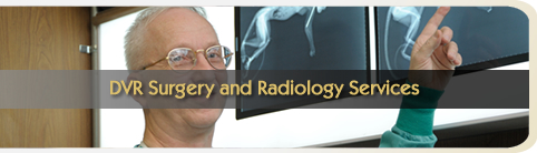 DVR Surgery & Radiology Services