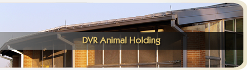 DVR Animal Holding